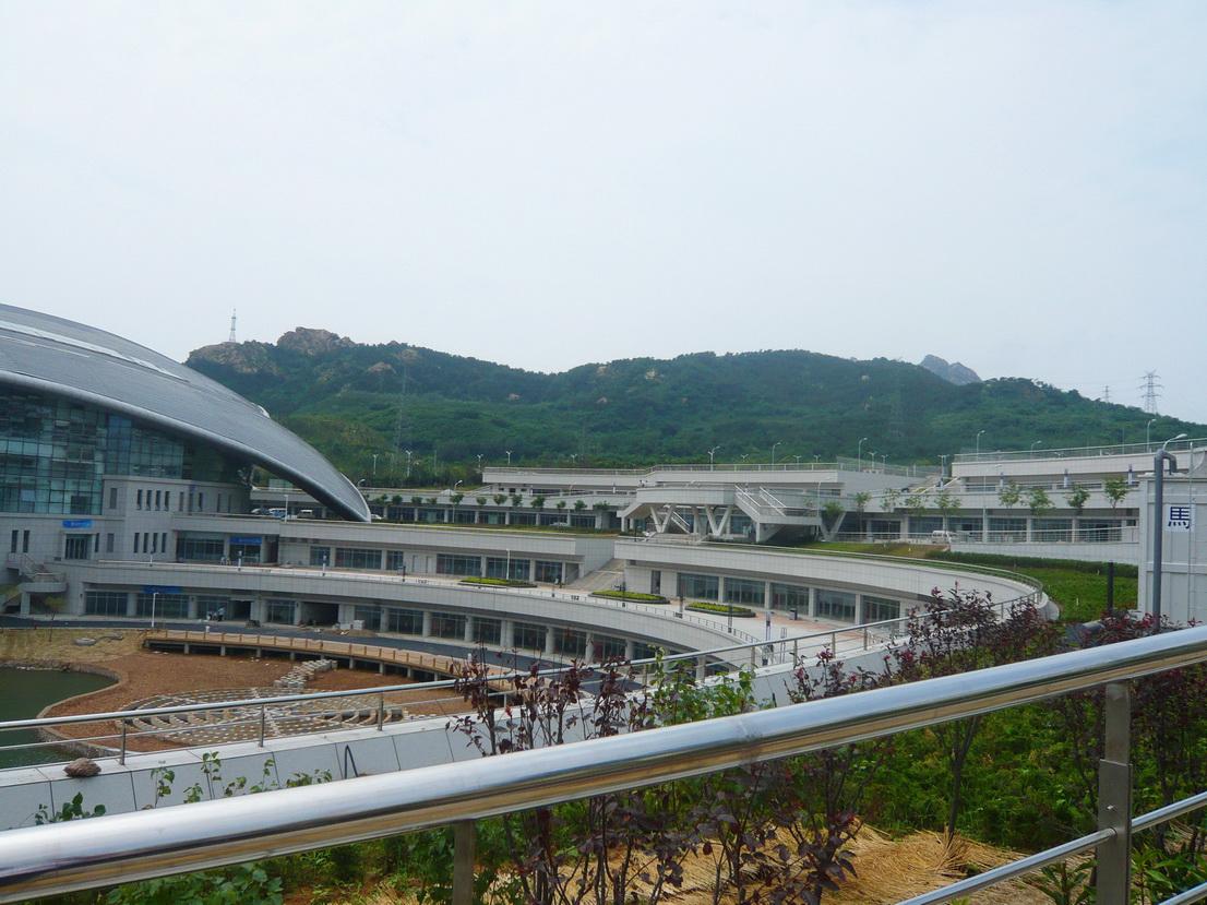 青岛颐中体育场景观绿化工程